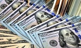 Datincorp: Más del 53% de los entrevistados quieren convertir el dólar en la moneda oficial de Venezuela
