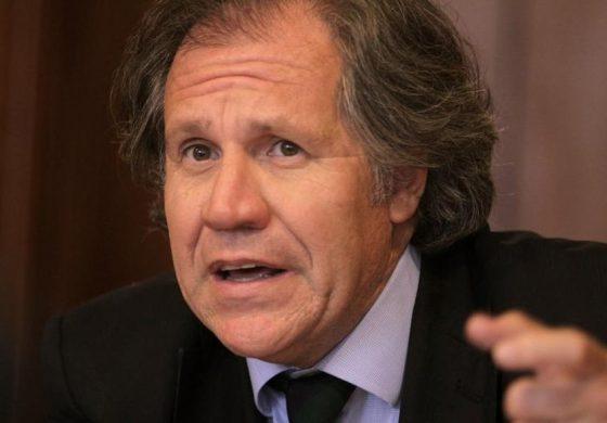 Almagro apoyó comunicado del Grupo IDEA sobre amenazas a Diputados de la AN