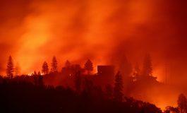 California declara emergencia en zonas en riesgo por incendios forestales
