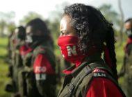 ELN mantiene presencia y protección en 12 estados de Venezuela, según Julio Borges