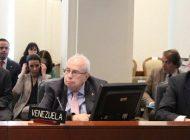 Embajador de Guaidó presentó ante la OEA el Plan País para recuperar Venezuela