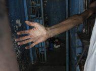 Casi 600 venezolanos han sido liberados de centros de detención en EEUU