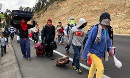ONU: Cuatro millones de venezolanos han huido del país por la crisis
