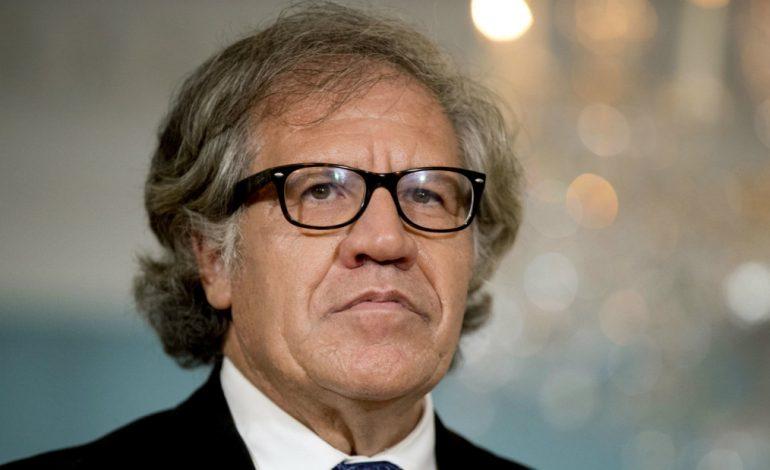 """Estados Unidos apoya """"firmemente"""" reelección de Almagro en la OEA"""