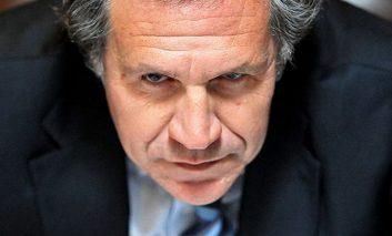 Almagro: el problema de las democracias latinoamericanas es cuando gobierna un burro