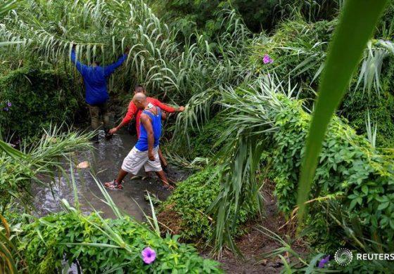 Más de 600 mil venezolanos han obtenido el PEP en Colombia