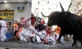Sin heridos por asta de toro penúltimo encierro de las fiestas de San Fermín