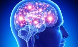 El cerebro y la reconfiguración emocional neuro-integrativa, por Dr. Víctor Villavicencio