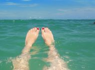 Presunto ataque de tiburón pone en alerta a bañistas de Miami Beach
