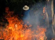 Macri ofrece ayuda a Bolsonaro por incendios en la Amazonía