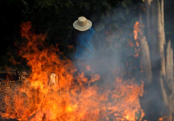 En fotos: el Amazonia se consume en llamas