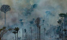 Más de dos millones de dólares ha recibido Bolivia para combatir incendio en el Amazonas