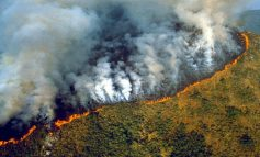 Luxemburgo no firmará acuerdo UE-Mercosur, si Brasil no protege Amazonía