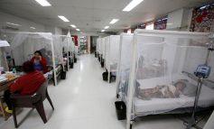 Plan País propone una solución integral al problema de la malaria