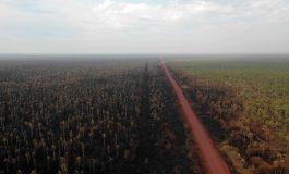Indígenas de la Amazonia boliviana reclaman que se declare el área de desastre