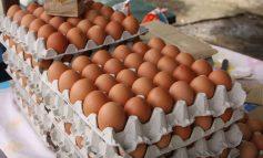 ¡Insólito! Venezolanos solo pueden comprar un cartón de huevos con el nuevo salario mínimo