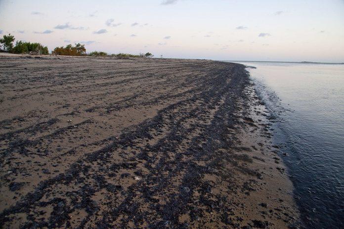 Pdvsa niega que petróleo en playas de Brasil sea venezolano