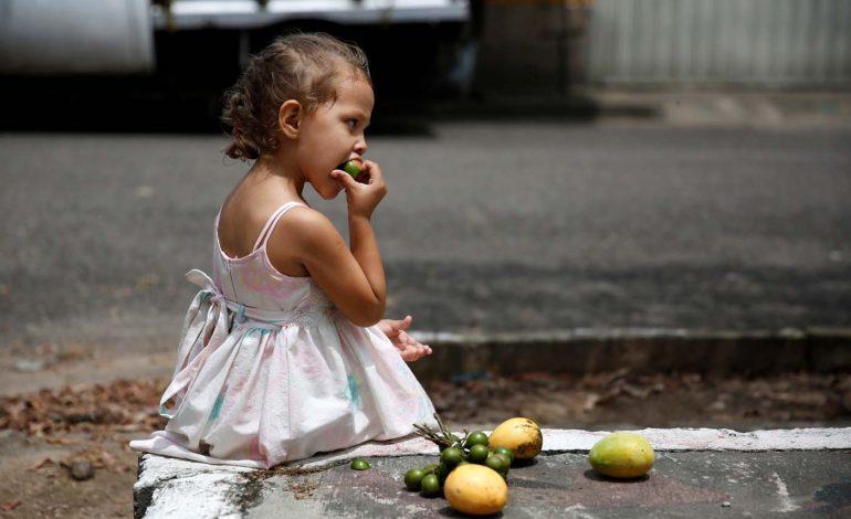 Venezolanos solo disponen del 36% de los alimentos requeridos para satisfacer sus necesidades