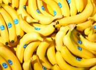 Empresas miameras trabajarán en conjunto para acabar con hongo que ataca bananas