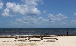 El cambio climático mermará el oxígeno de los océanos hasta 4% en 2100