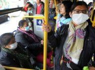 La pandemia de coronavirus deja ya más de 20 millones de contagiados en el mundo