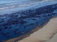 Chavismo intenta arreglar el desastre ecológico en la costa caribeña