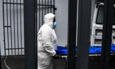 Pandemia de Covid-19 marca nuevo máximo con más de 690.000 casos en las últimas horas